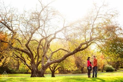 Sesión de árboles de otoño: sesión de compromiso en Nueva Jersey