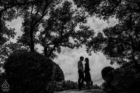Silueta de los bailarines - Fotos de compromiso de California en los árboles y las colinas