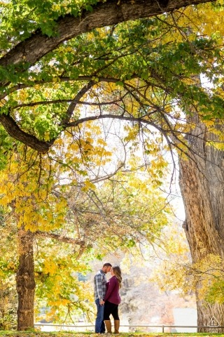 Underneath the trees in California - Pre-Wedding Engagement Photos