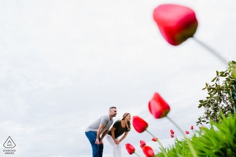 Engagement Portraits at Greenhill Winery in Middleburg, VA - Giant tulip couple