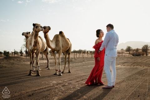 Maleiha Desert, Dubai pre-wedding portretten - Photobomb door Camels