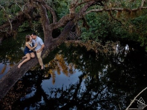 Ritratti pre-wedding di Key West - Fun Engagement Session su un albero sopra l'acqua
