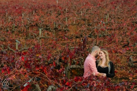 Calistoga, CA Engagement photo of couple in red vineyard.