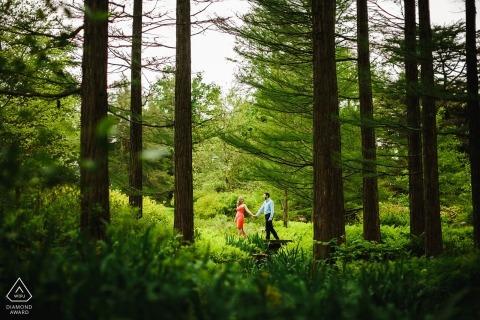 Longwood Gardens Engagement Portrait Session - Una passeggiata tra gli alberi