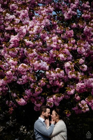 A couple stands face to face beneath a large, pink-flowered tree during their Middelheim pre-wedding photo session by an Antwerpen, Flanders photographer.