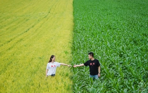 Outdoor photo of engaged couple holding hands in a field during their pre-wedding shoot in xinjiang