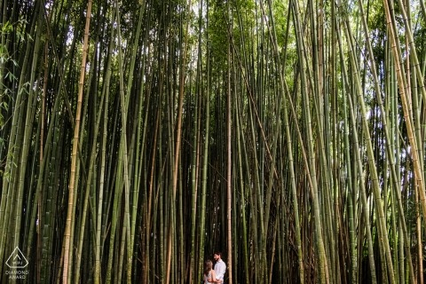 Coimbra, Portugal couple in a bamboo forest during their engagement photo shoot
