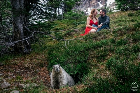 Engagement Photography for banff national Park, AB, Canada - Portrait contains: Marmot, red dress, couple, trees, snow