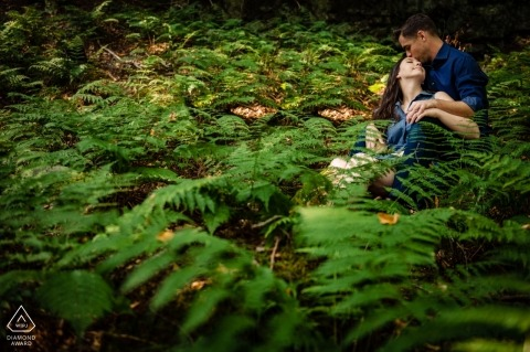 Into the ferns... Engagement Portraits in Blackwater Falls West Virginia