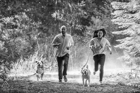 Atlas, Ca Un couple fiancé courant avec les chiens pendant une séance de portrait