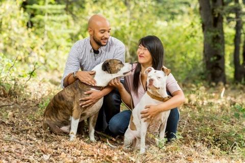 Wald in Alta, Kalifornien | Welpe, der dem Mädchen des verlobten Paares einen Kuss gibt