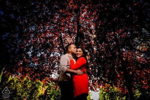 Engagement session in Chicago, IL under colorful trees with a light