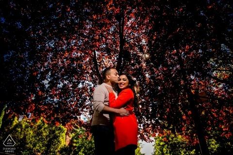 Verlobungssitzung in Chicago, IL unter bunten Bäumen mit einem Licht
