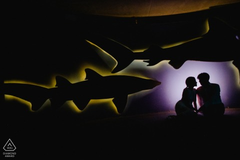 National Aquarium, Baltimore, MD silhouette couple portrait.