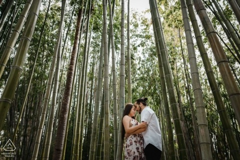 Engaged couple in bamboo forest at LA Arboretum - Pre wedding pictures