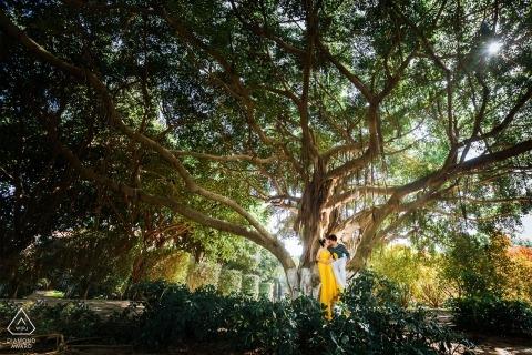 Fotograf vor der Hochzeit in Xiamen: Möge ihre Liebe wie dieser hoch aufragende Baum gedeihen