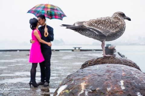 Ritratti di coppia di San Francisco per il pre-matrimonio | Il mare, l'uccello e gli innamorati