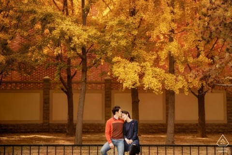 Beijing Pre Wedding Picture Session - Portrait contains: fall, colors, leaves, trees