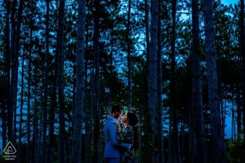 Morton Arboretum, Lisle, IL Verlobung Foto eines Paares - Porträt enthält: Wald, Wald, Blau, Abend, Himmel