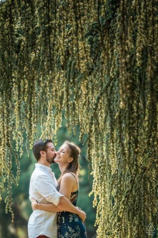 Sesja miłosna pary. Zdjęcie zrobione pod bardzo starym, rzadkim drzewem. Ogrody Wersalskie, Francja