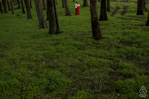 California - Northern Presidio couple portraits in the grass below the trees
