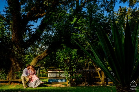 São Paulo - Joaquim Egidio Engagement Photo Session - Couple seeting near to the trees