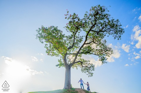 Campinas - São Paulo Pre-Wedding Portraits - A couple walk under the tree