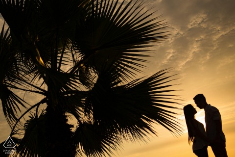 Lima Peru Pre Wedding Picture from Sunset with a Palm Tree