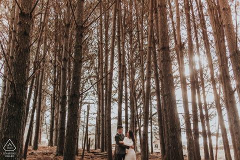 Engaged Couples Photography | Gramado / Rio Grade do Sul forest portrait