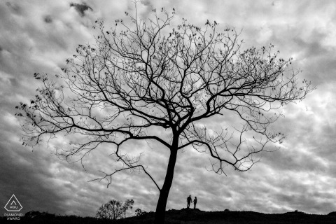 Engagement Picture Session from Matelandia, Paraná, Brazil - A great tree, a great love