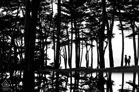 Black and white engagement portrait of a silhouetted couple amongst a cluster of trees and water