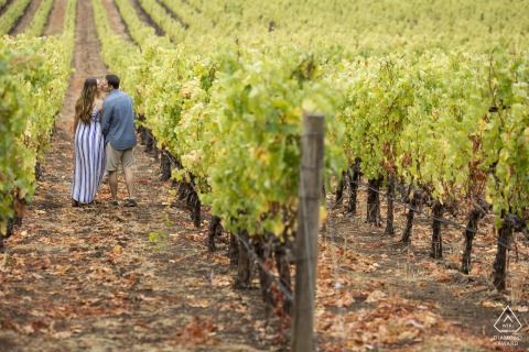 napa ca vineyard walking during afternoon portrait session