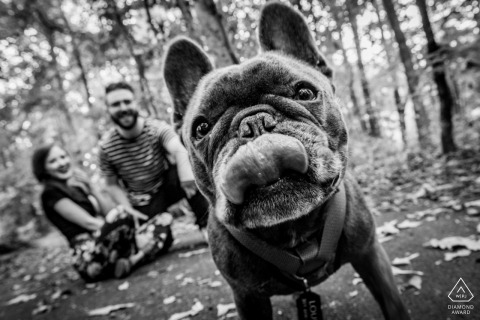 A front and center pup at the Great Falls National Park during a prewed photoshoot