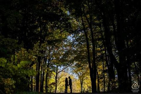 chicago couple engagement portrait session under the tall, dark trees