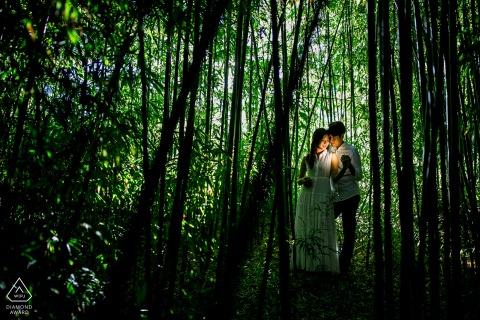 a Bamboo Bliss, green portrait shoot at the San Francisco Botanical Garden