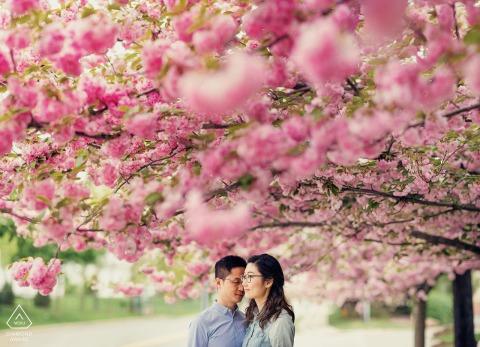 nj flowers and couple under them during engagement portrait session