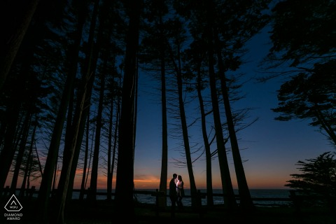 Sunset Bliss in the trees during a couple portrait session at Moss Beach, California