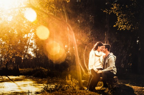 Western Cape Pre-Wedding Photographer: As the sun was setting through the trees, I saw this beautiful sun streaks through the trees and wanted to use it to place more focus on the couple at irene farm