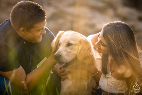 The couple embrace their dog during their engagement shoot in the mountains of Colorado