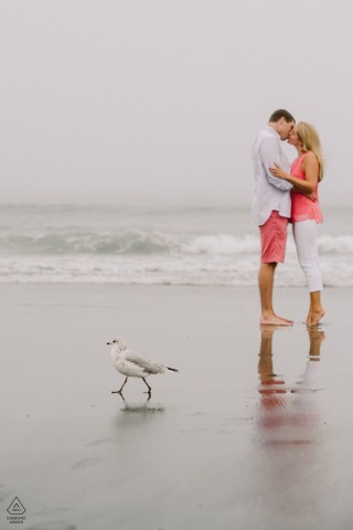 A Seagull photo bomb during an engagement portrait session at York Harbor Beach, York, Maine