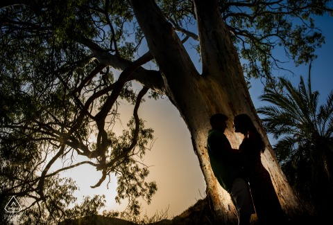 Águilas engagement portraits under a big tree with Spain Shadows