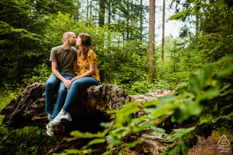 Utrecht Couple having fun sitting on a giant fallen tree during engagement photo session in Landgoed Den Treek