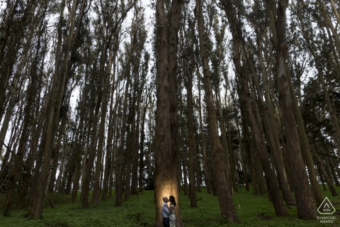 Lovers Lane engagement shoot with the tall trees and lit portrait