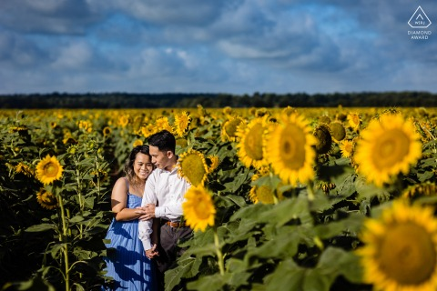 Sunflowers Field engagement portrait session for a couple in towering flowers