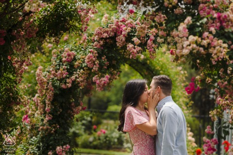 Massachusetts pre wedding photo of a couple kissing under flowers