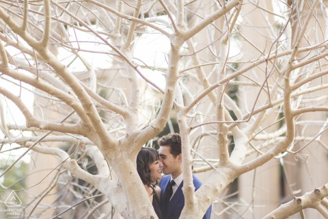 California palace of fine arts engagement shoot with a couple in the tree branches