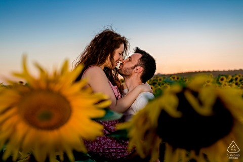 El Carpio, Córdoba, Spain engagement shoot amongst a field of sunflowers