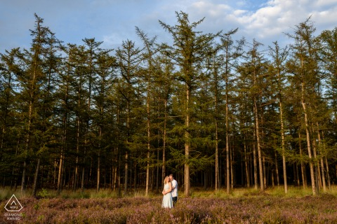 Portrait session in Heather near Eindhoven of a Couple in blooming fields with trees
