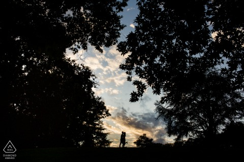 Big trees and sunset engagement image of a silhouetted couple at the top of the hill from Los Gatos, California