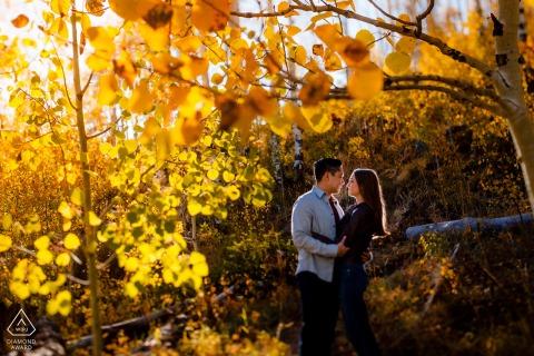 Berg-Verlobungsfotografie in Vail, CO, von der Sonne in einem Hain von goldenen Espenbäumen hinterleuchtet